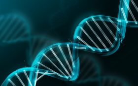 با حقایق علمی جدید درباره بدن انسان آشنا شوید !