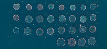 عکس های سورئال هوایی از مزارع پرورش ماهی توسط برنارد لنگ