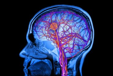 با 3 روش سخت اما موثر برای حفظ سلامت مغز بعد از 20 سالگی آشنا شوید
