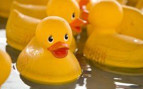 اسباب بازی های پلاستیکی دارای خطر مرگ برای کودکان هستند !