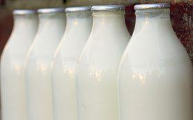 با 4 فایده شیر و محصولات لبنی آشنا شوید !