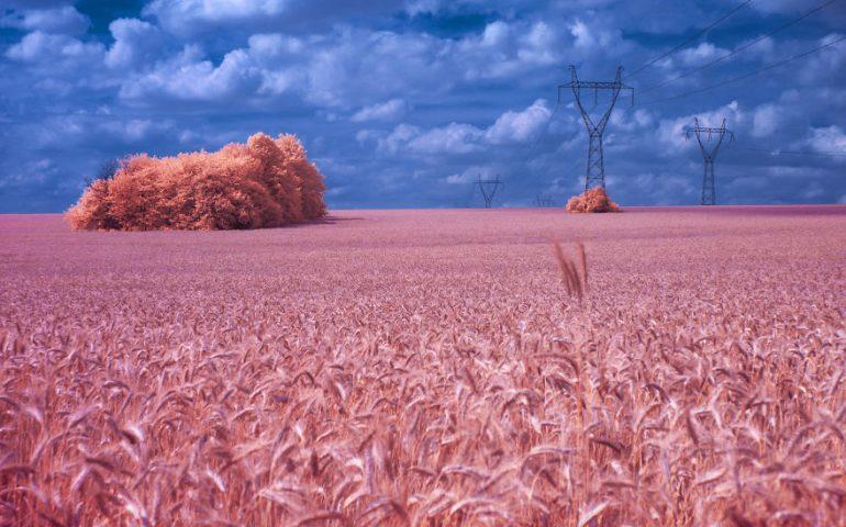 ایجاد جهانی رویایی با استفاده از عکاسی مادون قرمز
