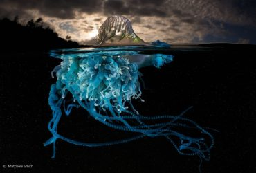 نگاهی به عکس های برگزیده مسابقه عکاسی جغرافیای طبیعی استرالیا 2018