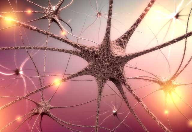 بیماری های سیستم عصبی