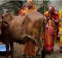 5 واقعیت اشتباه در مورد هندوستان