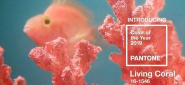 شرکت پانتون رنگ سال 2019 را مرجان قرمز اعلام کرد