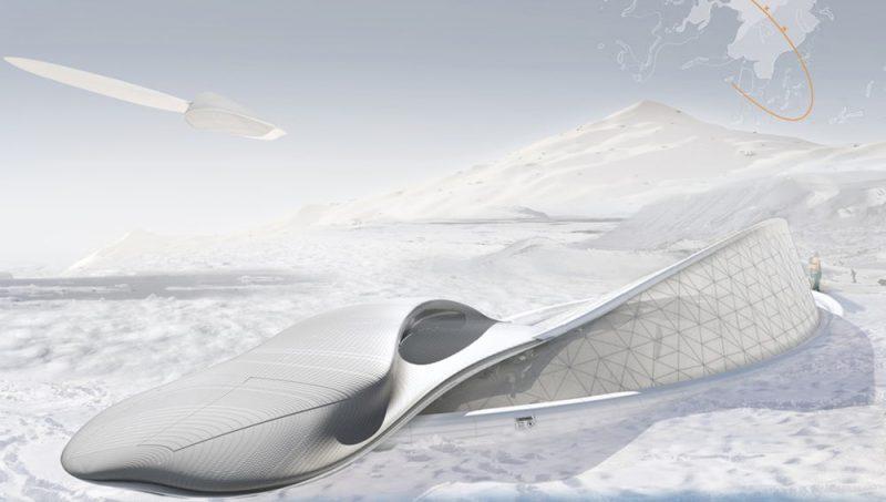 Arctic Seed طراح : David James Morgan