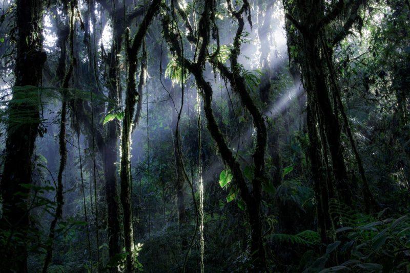 عکس : Samuel Feron عکس منتخب / دسته حرفه ای / بخش مناظر طبیعی