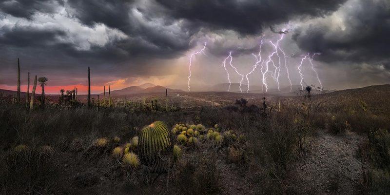 عکس : Luis Lyons عکس منتخب / دسته آماتور / بخش مناظر طبیعی