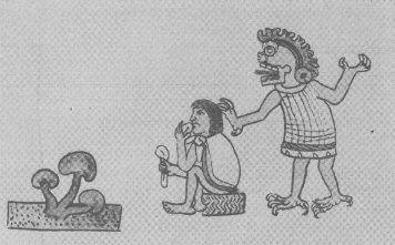 تصویر بدست آمده از قرن 16 در مکزیک 3 قارچ ، مردی که در حال خوردن قارچ است و خدایی که از طریق قارچ با مرد سخن میگوید!