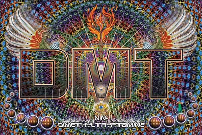 حقایق علمی ناگفته درباره ی DMT