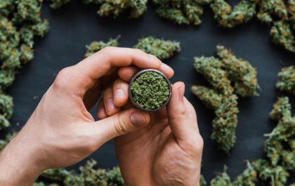 اثر ماریجوانا تا چه مدت در بدن می ماند؟