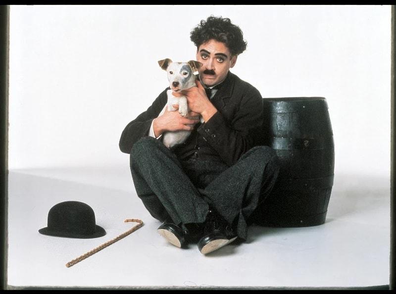 چاپلین (Chaplin)