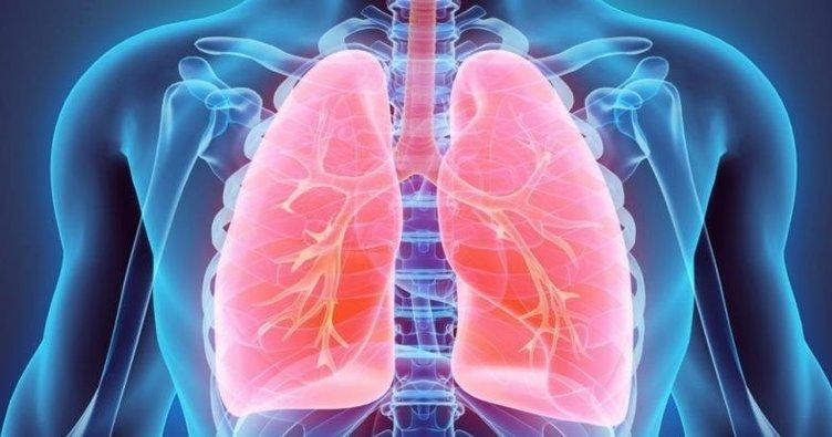 6 ماده فوق العاده برای تقویت و پاکسازی ریه ها !