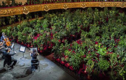 کنسرت برای گیاهان