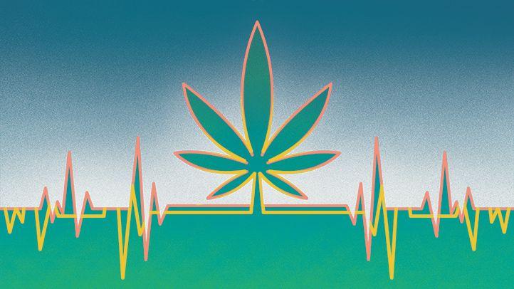 تاثیر ماریجوانا بر قلب و مغز ؛ خطر سکته را جدی بگیرید!